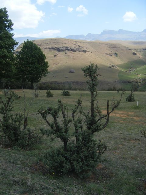 Drakensberg, South Africa, also merely added here to brighten up the otherwise text-only page